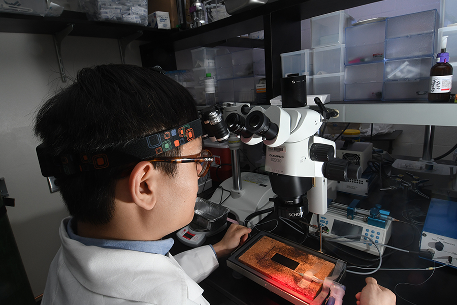 NOW - Research equipment at McGovern Medical School