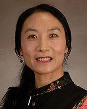 Yang Xia, M.D., Ph.D.