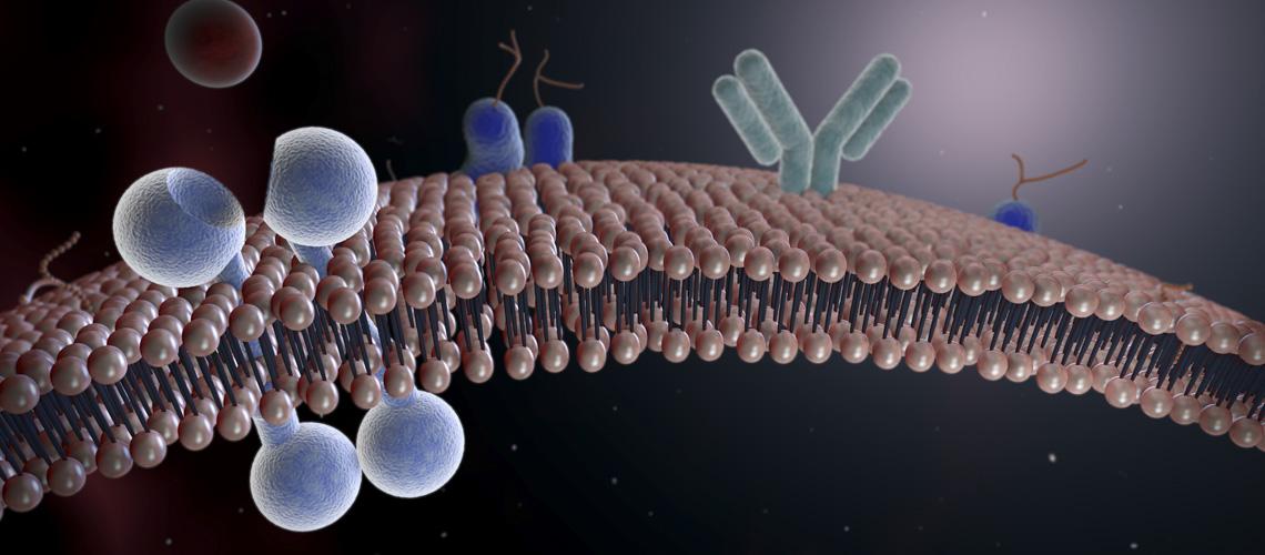 Membrane Lipid - Dowhan
