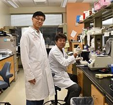 image from UTHealth scientists block cancer-induced muscle wasting in preclinical study