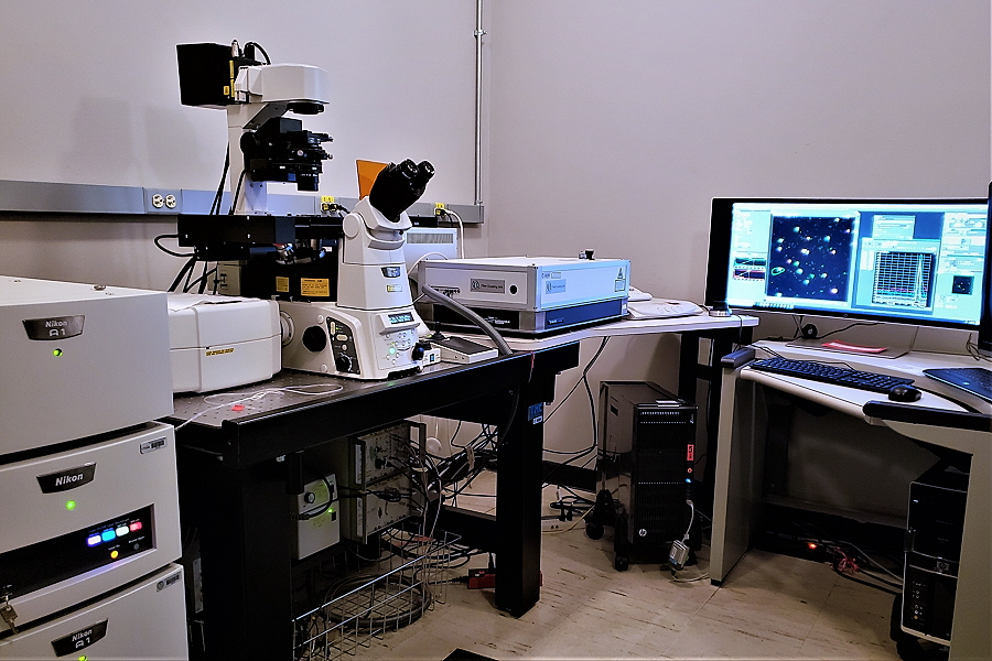 picture of Nikon A1 Confocal Laser Microscope System & PicoQuant