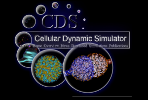 CDS homepage image