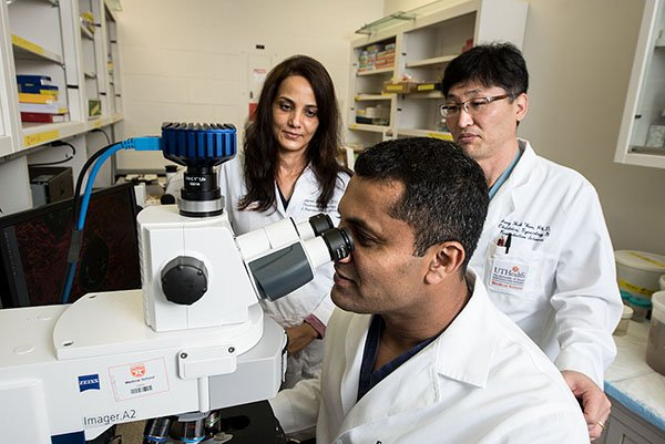 image from Fetal intervention research team studies new regenerative patch as treatment for spina bifida