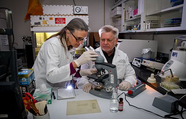 image from UTHealth microbiologists make breakthrough in syphilis research