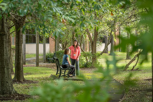 image from State approves funds for UTHealth continuum of care campus