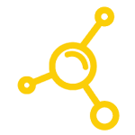 icon-Divisons