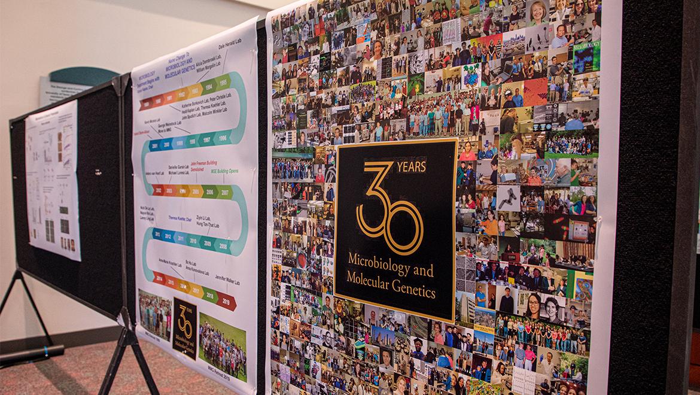30th Anniversary Photo Board