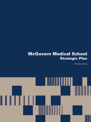 Strategic Plan publication cover